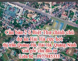 Cần bán 2 ô Biệt Thự chính chủ dự án Hải Hà cực hot.