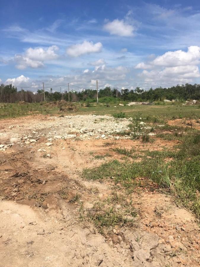 Chính chủ cần bán lô đất ở vĩnh lộc B, bình chánh