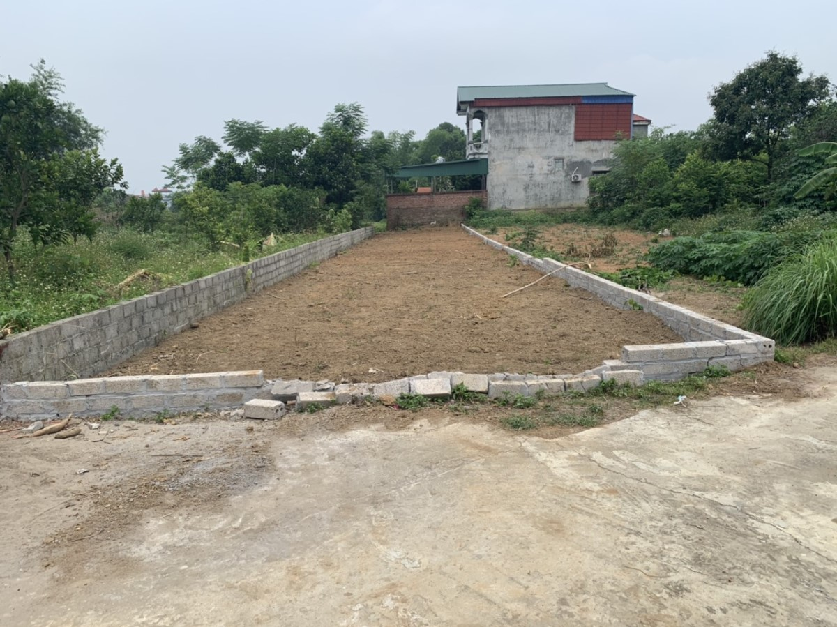 Chính chủ cần bán gấp mảnh đất ở thôn 8 tân xã