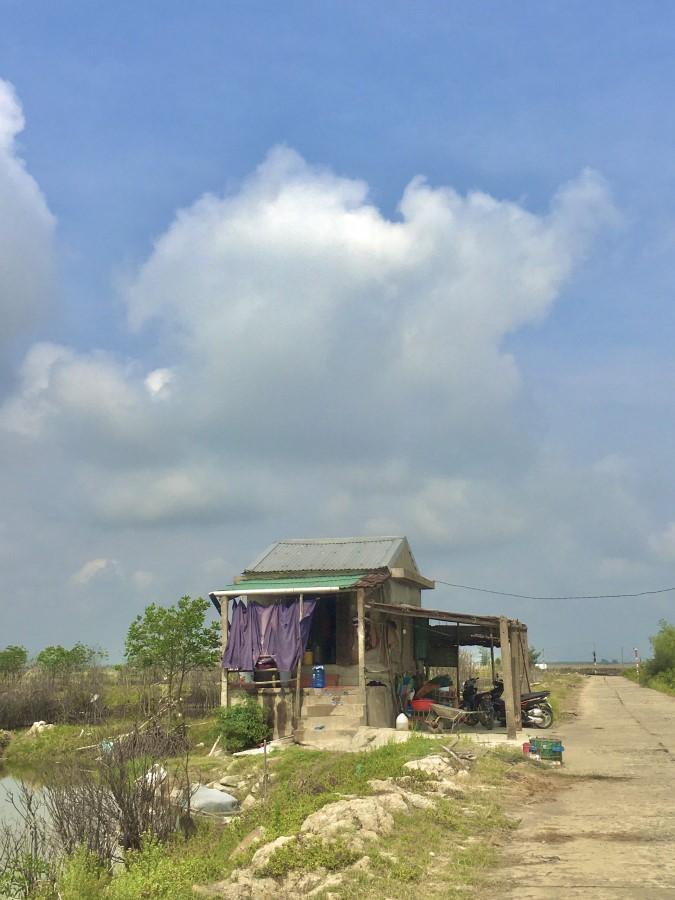 Cần cho thuê ao nuôi tôm cá tại Hương Phong, Hương Trà, Thừa Thiên Huế