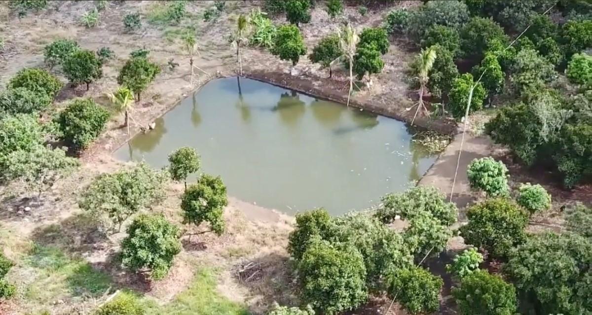 Cần Bán Vườn Trái Cây Sinh Thái 3.7ha Tại Tp.Long Khánh (có suối, hồ), Giá Quá Rẻ