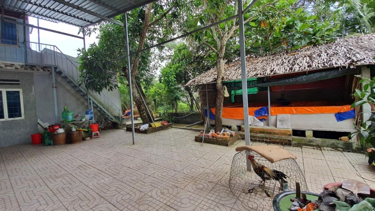 Bán đất đẹp chợ phường 8, TP Vĩnh Long.