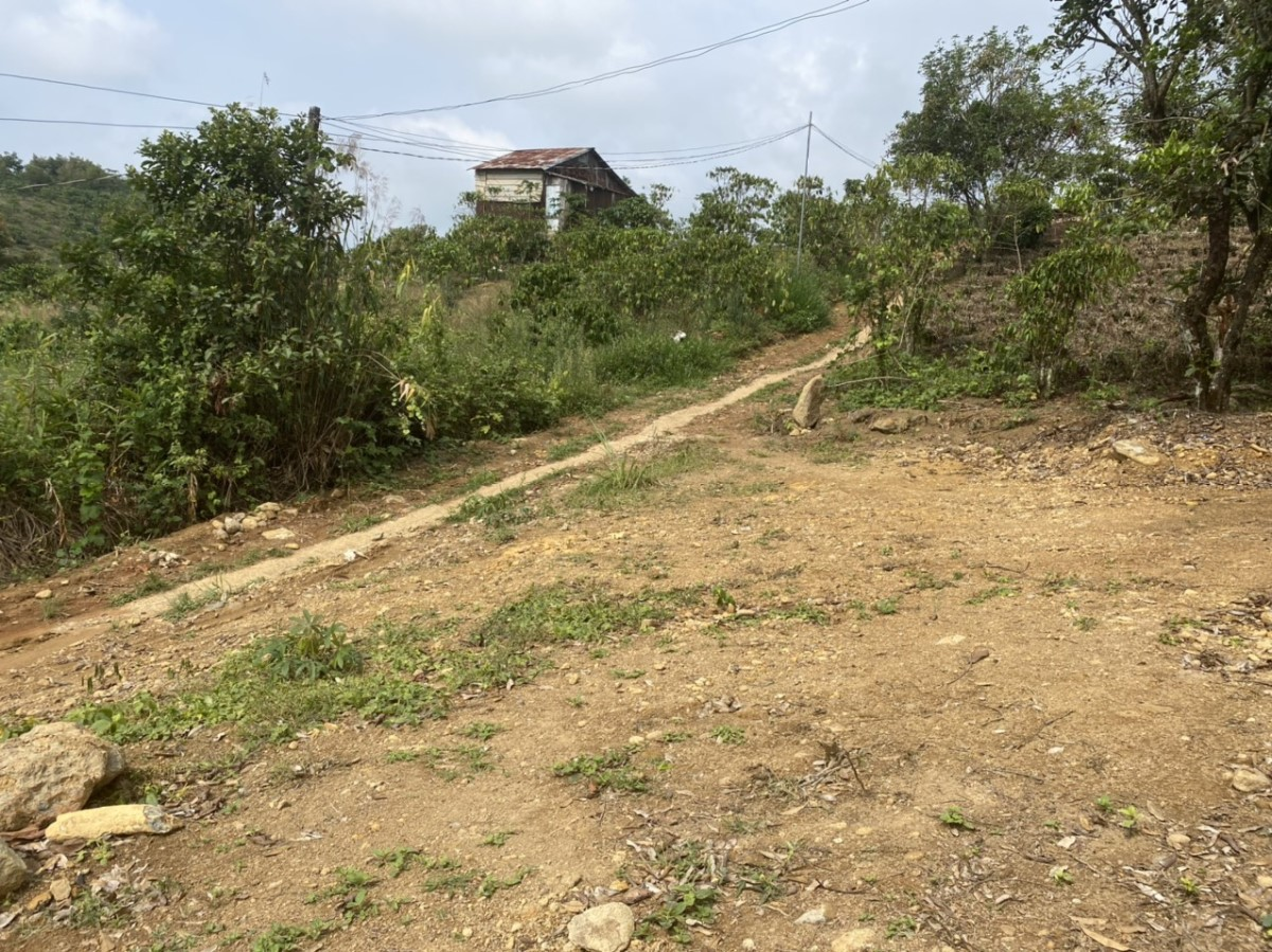 Bán đất nghỉ dưỡng có ao và suối đẹp quanh đất tp bảo lộc