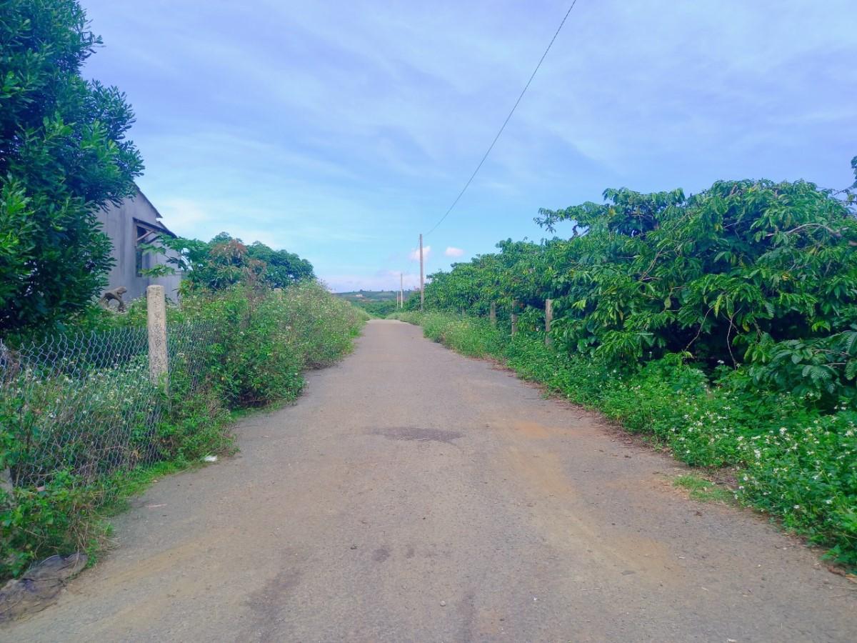 Cần bán gấp lô đất mặt tiền biệt thự Nguyễn Văn Cừ - TT Di Linh