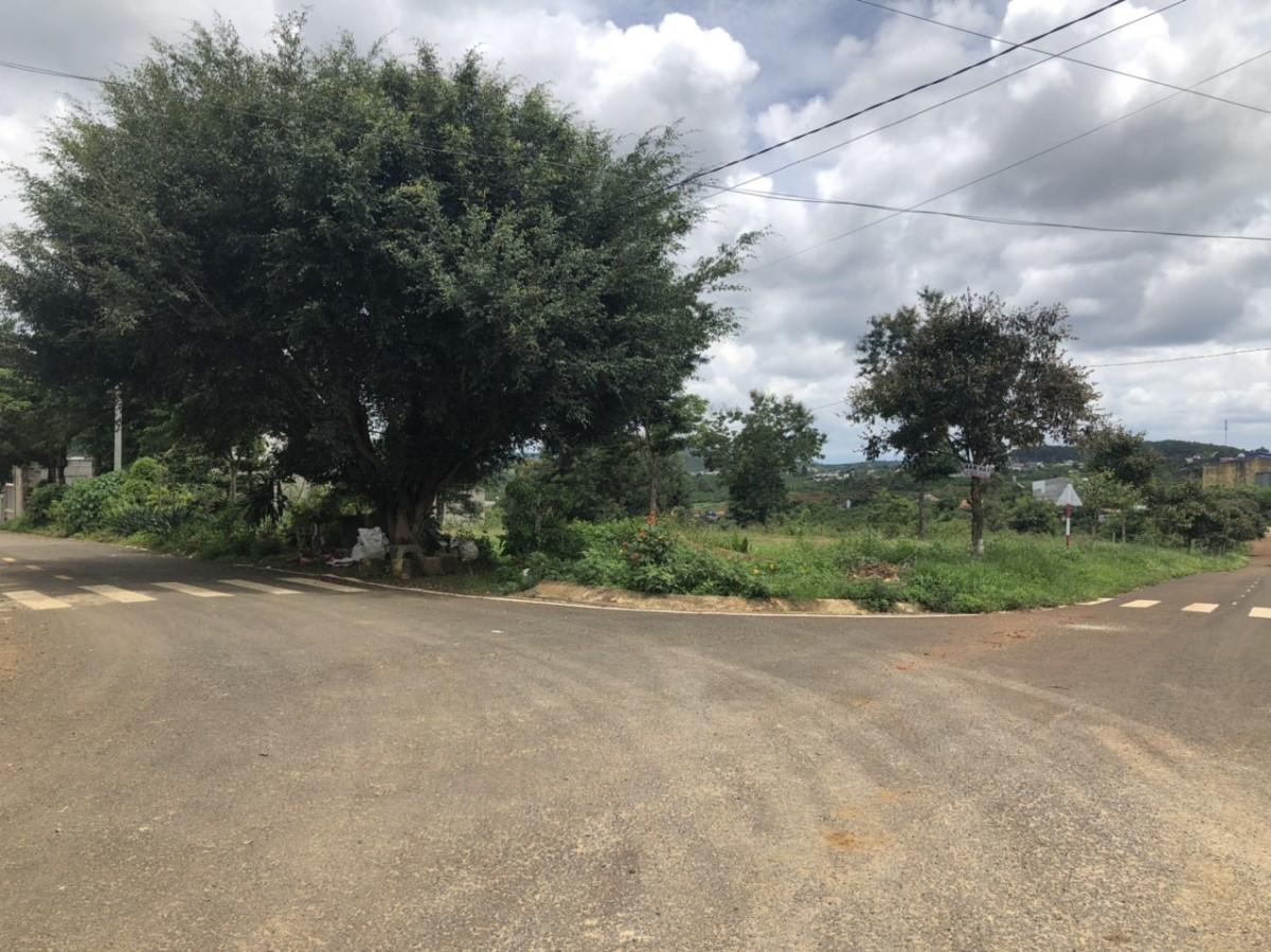 Cần bán gấp lô đất 2 mặt tiền gần quán cơm Hà Nội 4 - TT Di Linh
