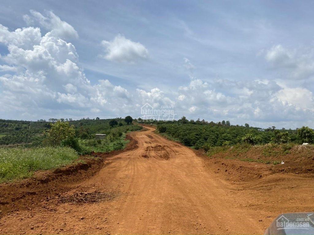 Bán đất khu vực phường lộc tiến mặt đường rộng