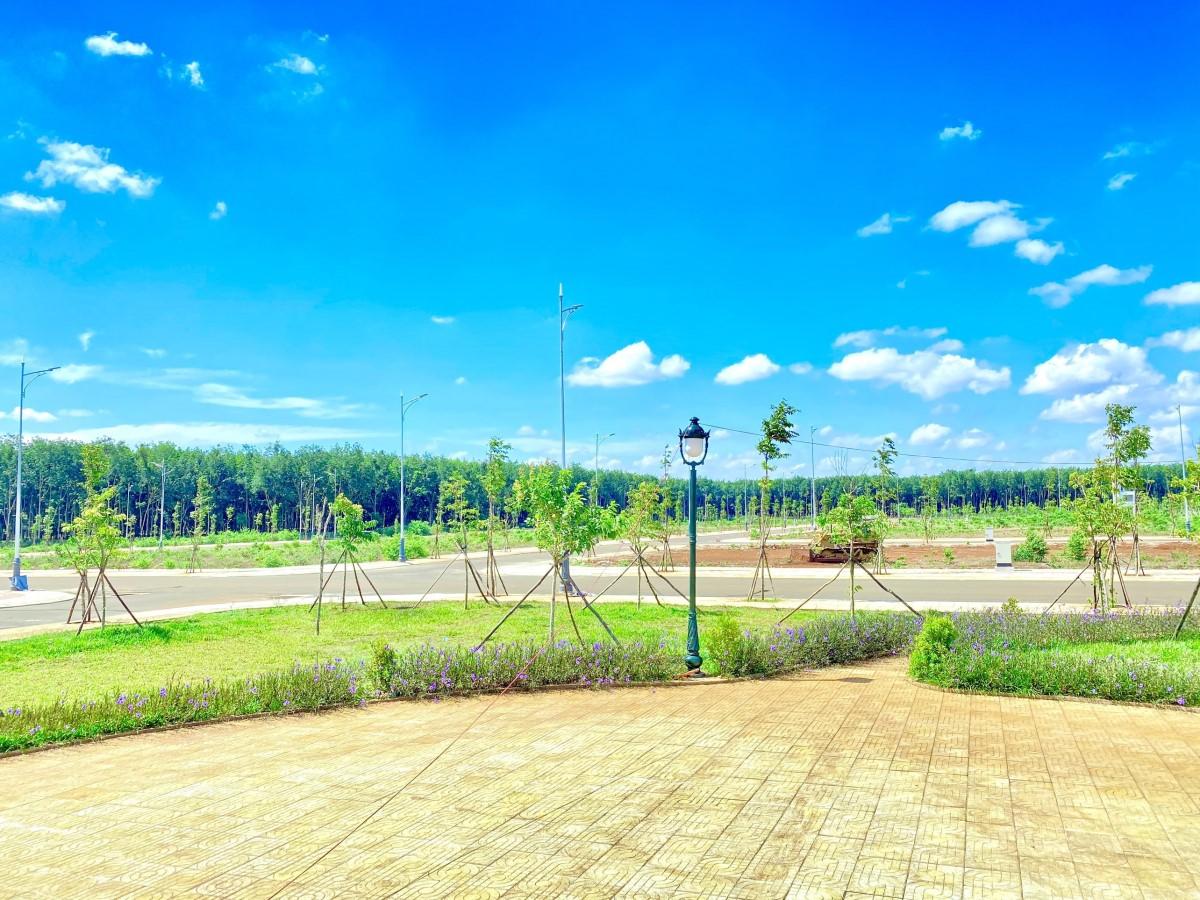 Thông tin mới nhất về Khu đô thị Ân Phú, liên hệ 0966219705 nhận ngay nhiều ưu đãi.