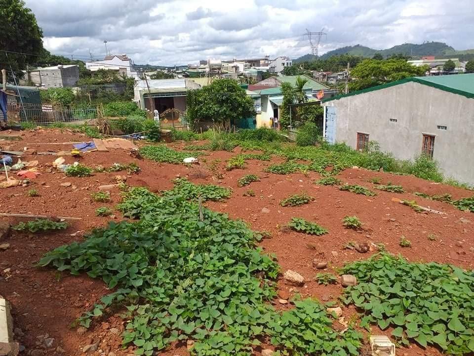 Chính Chủ Cần Bán Đất Vị Trí Đẹp Tại Phường Nghĩa Trung, TP Gia Nghĩa, Tỉnh Đắk Nông