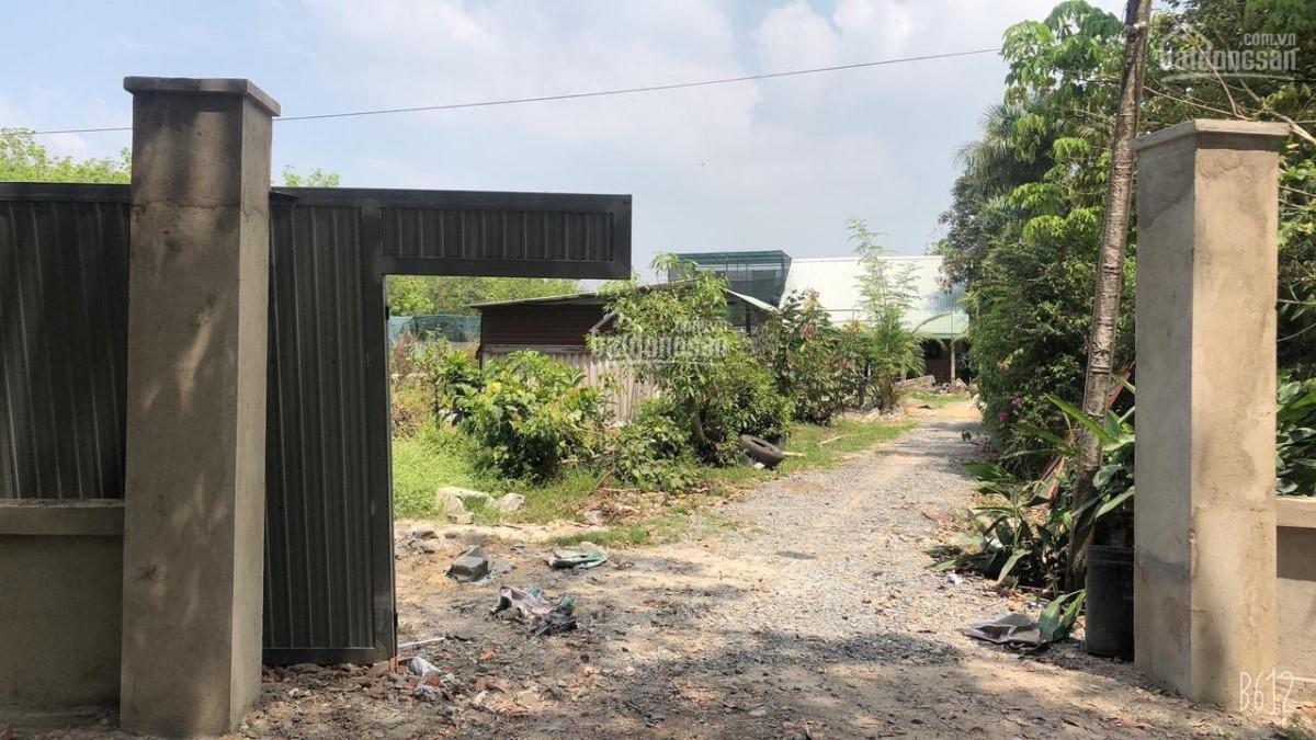 Bán 3.800m2 Đất Giá Rẻ Mùa Covid Tại phường Lộc Hưng, thị xã Trảng Bàng Tây Ninh