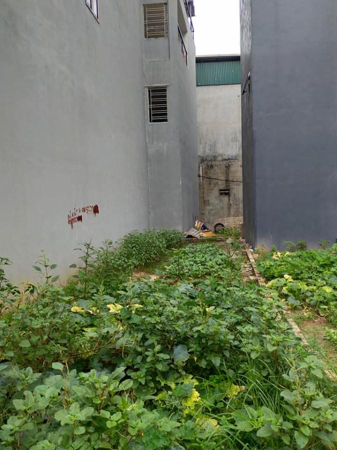 Bán gấp mảnh đất ngõ 61 Phố Trạm, Long Biên, Hà Nội.