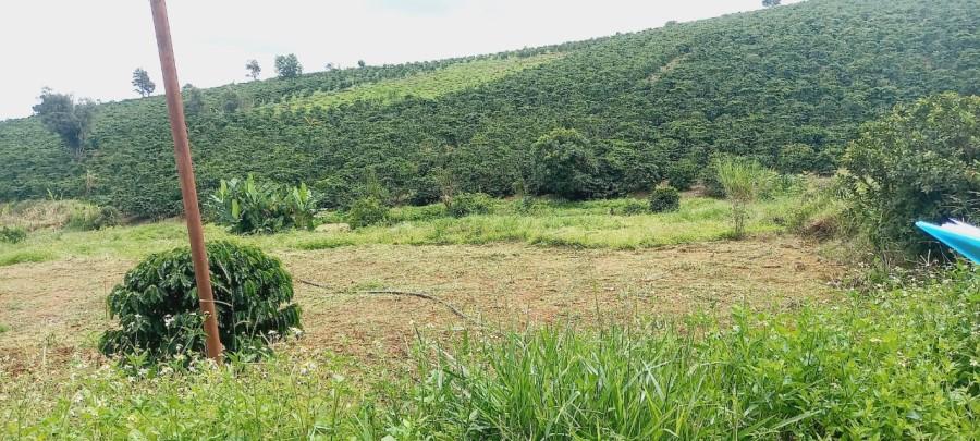 Nửa sào đất nghỉ dưỡng tựa đồi thông giá 639 triệu gần TT. Nam Ban- Lâm Hà- Lâm Đồng