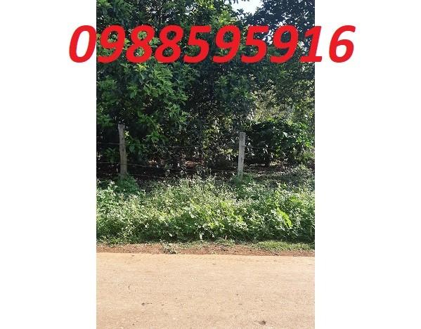 Chính chủ bán đất tại xã Cuoorr Đăng, Cư Mgar, Đăk Lăk, 0988595916