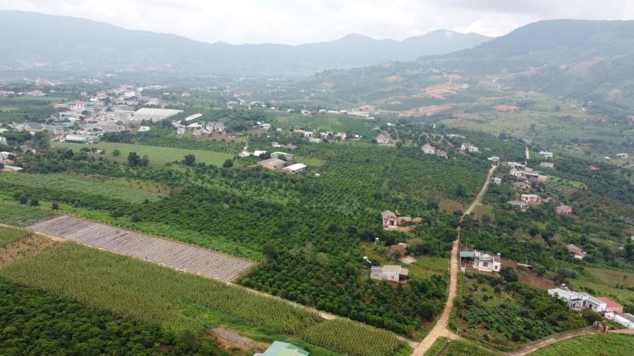 Đất giá rẻ tại Đông Thanh- Lâm Hà