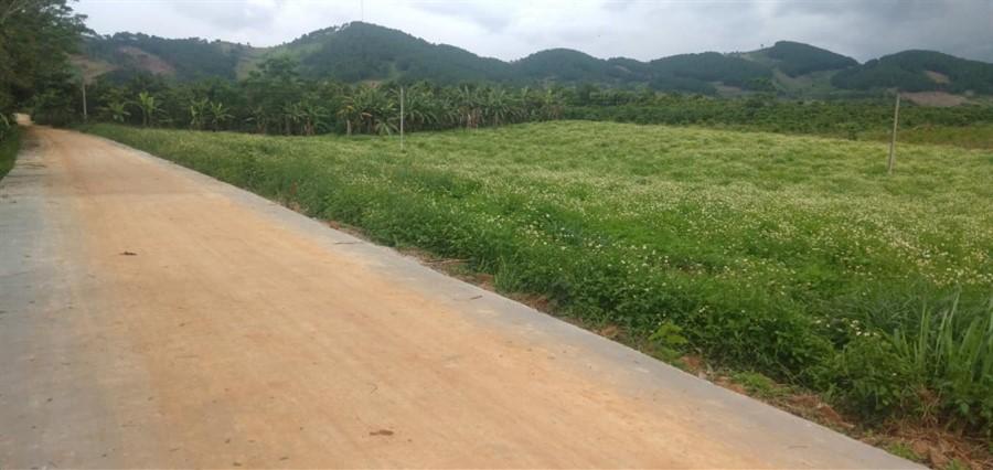 518m2 Giá 690 Triệu Đông Thanh, Lâm Hà, Cách Đà Lạt 21km