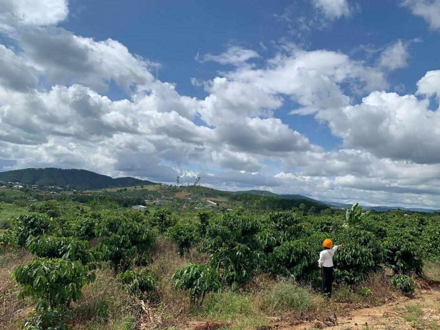 Sở hữu ngay 2325m2 có 60m đất mặt tiền đường tại Lâm Hà -0909810489.