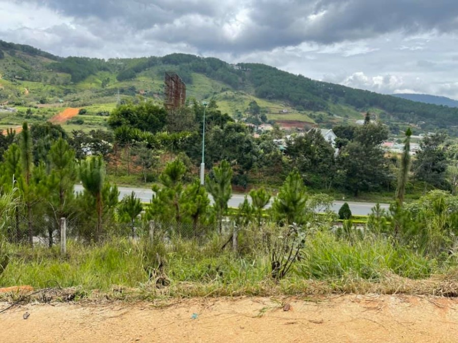 Bán đất view nghĩ dưỡng Núi Voi, cơ hội đầu tư mùa dịch