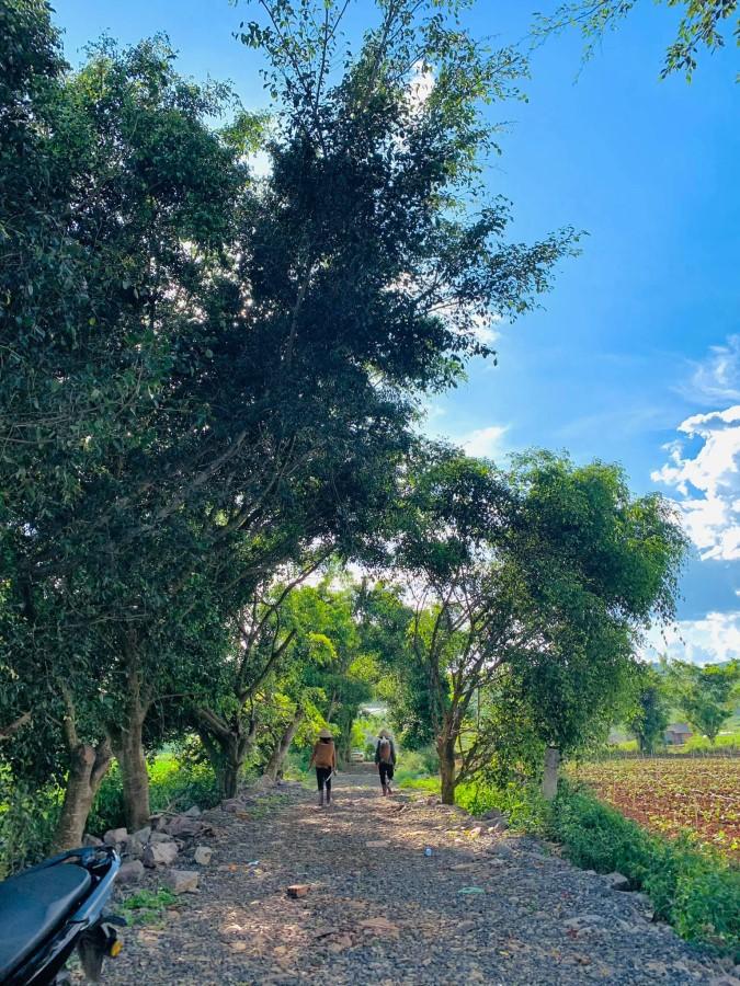 Bán đất ven thành phố Đà Lạt view sông Đa Nhim, giá rẻ