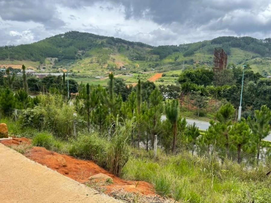 Bán đất nghĩ dưỡng cách Đà Lạt 15 phút xe máy view Núi Voi